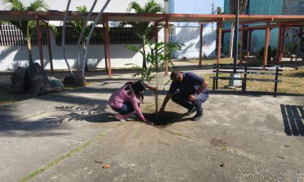 Realizada jornada de reforestación en el Complejo Cultural Santos Michelena