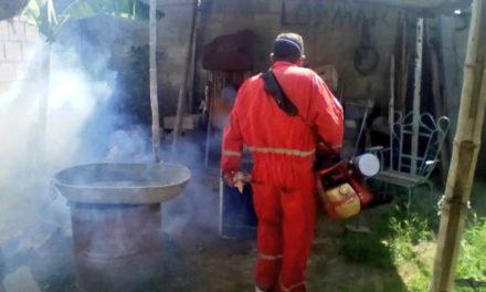 Gobierno de Aragua realiza jornadas de fumigación y abatización para controlar plagas