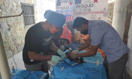 Gobierno Bolivariano de Aragua realizó jornada de esterilización para animales en el municipio Mariño