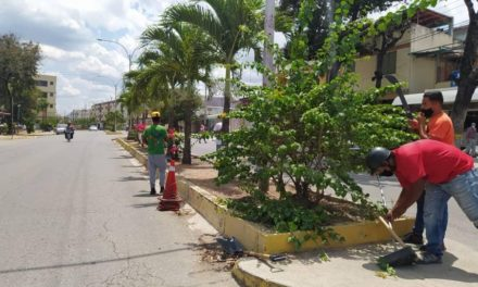 Alcaldía de Zamora continúa con trabajos de recuperación de las principales avenidas de Villa de Cura