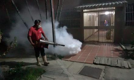Despliegan plan de fumigación nocturna en Lamas