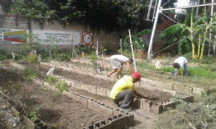 Inician trabajos de recuperación de espacios de la Escuela Agroecológica Sueños del Arañero en FLA