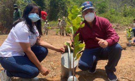 Realizada jornada de reforestación en el Parque Nacional Henri Pittier en honor a Oswaldo Barbera