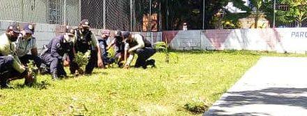 Funcionarios de Seguridad de Linares Alcántara realizaron siembra de árboles en el sector El Museo