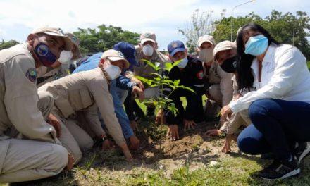 Gobierno realizó jornada de reforestación en Ciudad Socialista Arsenal