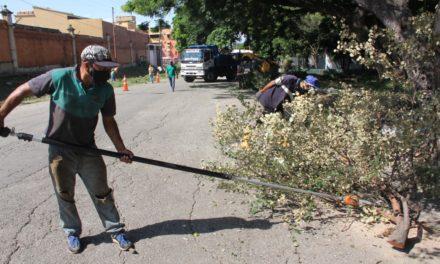 Gobierno regional y municipal despliegan Plan de Atención Integral en Mata Redonda